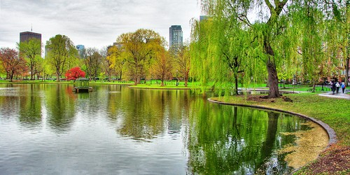 boston public garden by flickr Harris